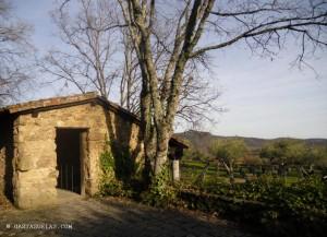 2-Cementerio Aleman-Cuacos de Yuste