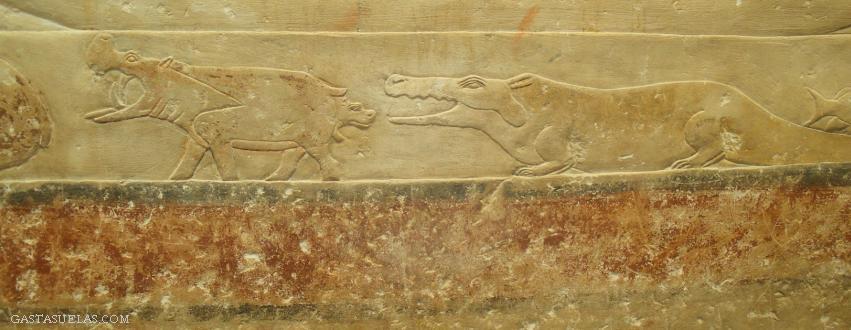 2-Egipto-Saqqara-Gastasuelas
