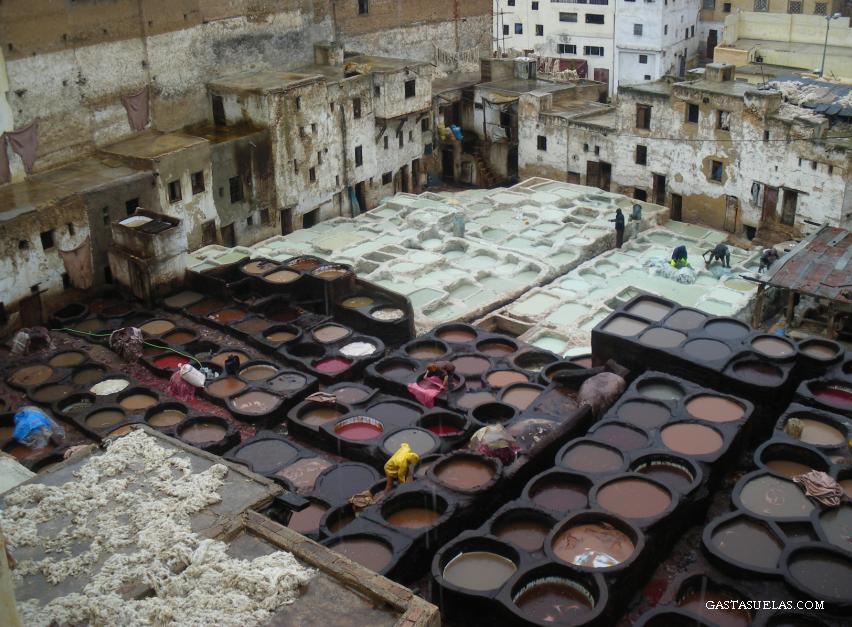 Viaje a Fez (Marruecos) y sus Tenerías
