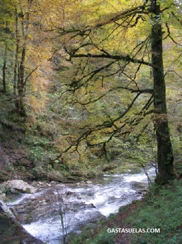 Río en la Garganta de Holzarte (Francia)