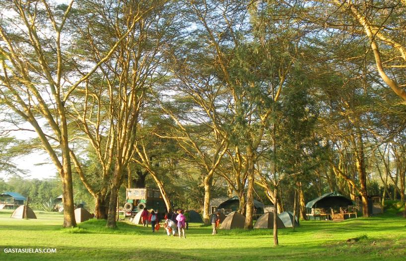 campamento crescent island