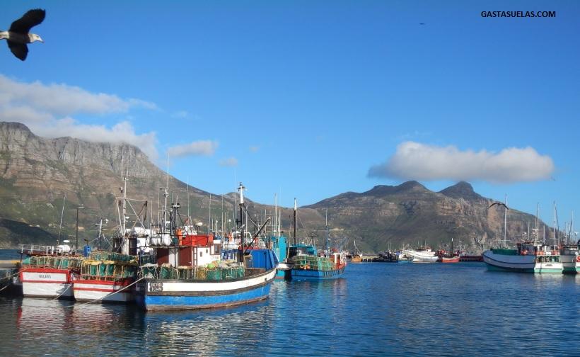 pescadores-hout-bay