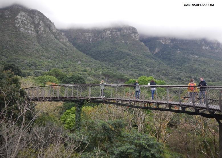 Canopy en el Jardín Botánico de Kirstenboch (Sudáfrica)