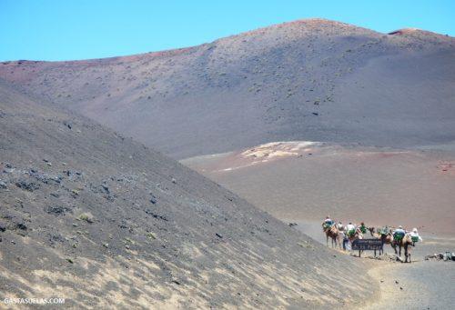 Excursión en camello por Timanfaya (Lanzarote)