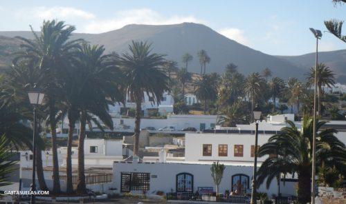 Valle de las 1000 palmeras en Haría (Lanzarote)