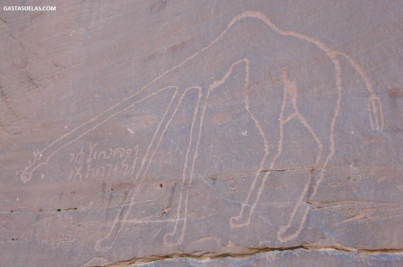 Grabados en las paredes de roca de Wadi Rum (Jordania)