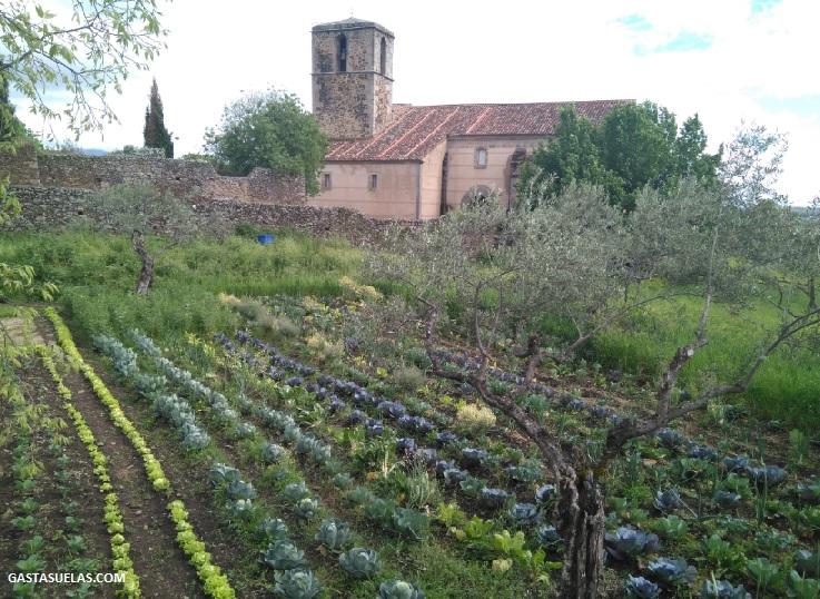 Huerto en Granadilla (Cáceres)