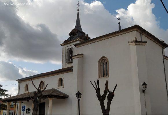 Cigüeñas en la Parroquia de Santa María Magdalena (Titulcia)