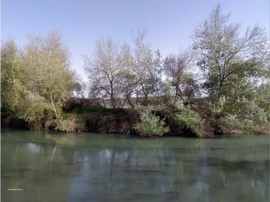 Río Tajo a su paso por Villamanrique de Tajo (Madrid)