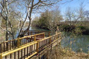 Parque Fluvial de Villamanrique de Tajo (Madrid): Una isla para disfrutar al aire libre