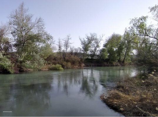Río Tajo en el Parque Fluvial de Villamanrique de Tajo (Madrid)