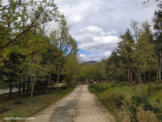 Camino de acceso al pueblo abandonado de Umbralejo (Guadalajara)