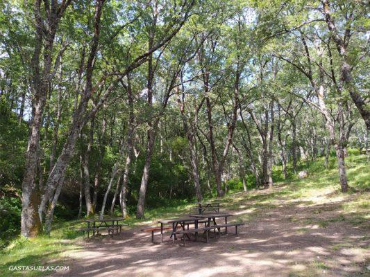 Mesas en el Área Recreativa Dehesa de La Acebeda (Sierra Norte de Madrid)