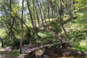 Área Recreativa Las Dehesas de La Acebeda (Sierra Norte de Madrid)