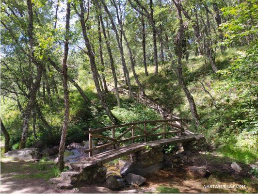 Pasarela en el Área Recreativa Dehesa de La Acebeda (Sierra Norte de Madrid)
