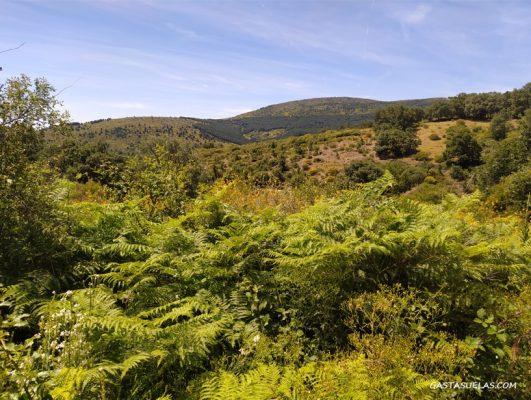 Vistas desde la Cañada Real Segoviana en La Acebeda (Madrid)